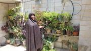 آبیاری قطرهای گیاهان خانگی