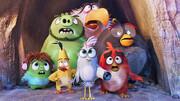 حمله دوباره پرندگان خشمگین به پرده سینما | بازگشت فیلم تخم طلا به گیشه