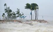 نابودی نیمی از اکوسیستمهای دریایی استرالیا بر اثر حوادث طبیعی