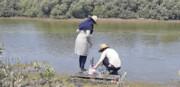 نمونهبرداری از آب و رسوب جنگلهای مانگرو در نایبند