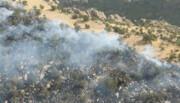 آتشسوزی ارتفاعات جنگلی کازرون و کهمره سرخی شیراز مهار شد