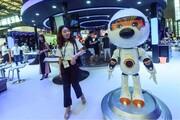 عکس روز: روبات سرگرمکننده چینی