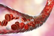 خونبندناف چه بیماریهایی را درمان میکند؟
