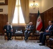 لاریجانی: نماد ورزیدگی و سختکوشی دیپلماسی ایران هستید