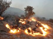 بوستانهای جنگلی تهران امسال ۲۵ بار آتش گرفتند