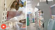 پنج میلیون بازدید از رژه موشها در فروشگاه ژاپنی