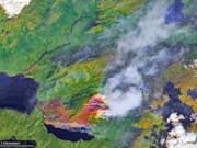 وسعت آتشسوزیهای جنگلی قطب شمال بزرگتر از اتحادیه اروپا