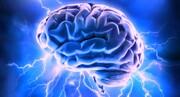 چگونه استرس مزمن منجر به آسیب مغزی میشود؟