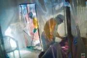 نتایج امیدوارکننده دو دارو در درمان بیماری ابولا در کنگو