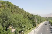 همکاری شهرداری و وزارت جهاد در زمینه پارکهای جنگلی