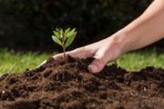 ۸ نکته درباره اهمیت خاک