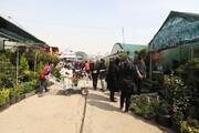 بازار گل شهید محلاتی جابهجا میشود
