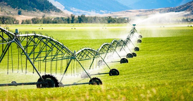 کشاورزی مدرن