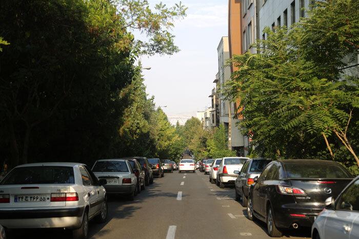 خیابان و طبیعت