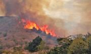 خسارت آتشسوزی در جنگلهای ارسباران ۱۰۰ هکتار تخمین زده شد