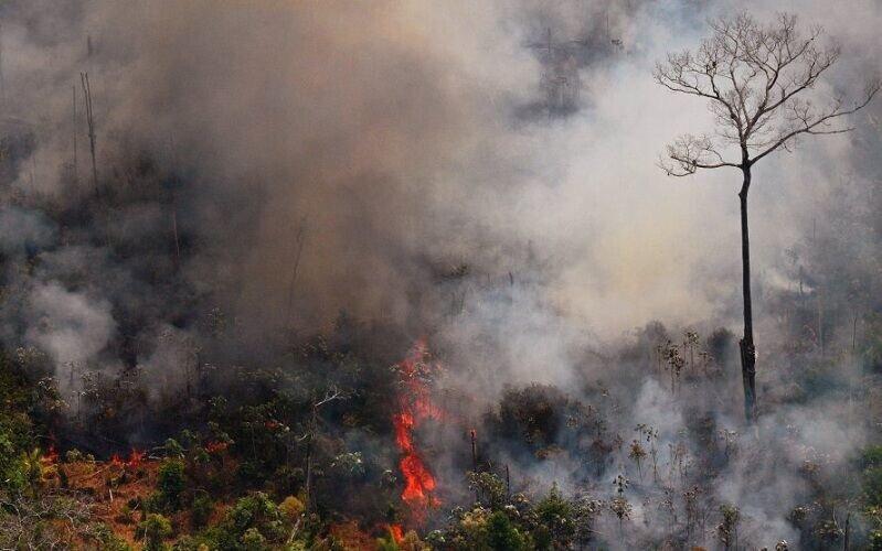 آتش سوزي جنگل هاي آمازون