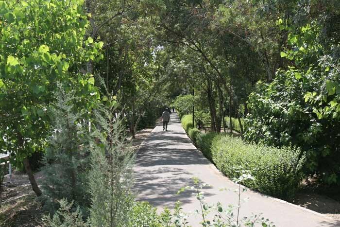 باغ شهردار