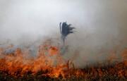 آتش در آمازون