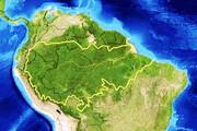 آشنایی با جنگلهای آمازون