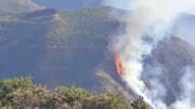 درخواست بررسی علل آتشسوزی جنگلهای ارسباران