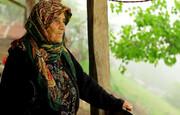 مستند «دلبند»؛ بیان مفاهیم بومی به زبان جهانی