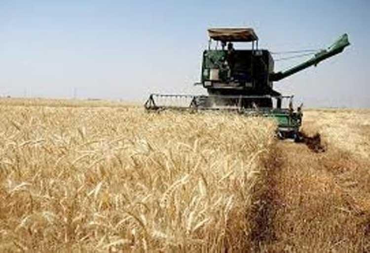 حركت مركزي به سمت کشاورزی مدرن