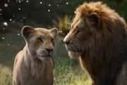 کاهش فروش تابستانه سینما در آمریکا   شیر شاه هم معجزه نکرد