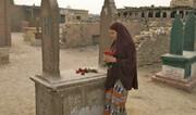 مصر با گلهای مسموم به اسکار میرود