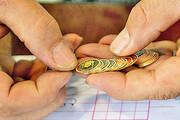 سکه گران شد | جدیدترین قیمت طلا و انواع سکه در ۵ بهمن ۹۹