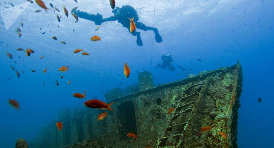 کشتی سلطنتی غرق شده در سال 1495 در اعماق دریای بالتیک پیدا شد