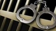 دستگیری زوج سارق خودروهای شرق تهران