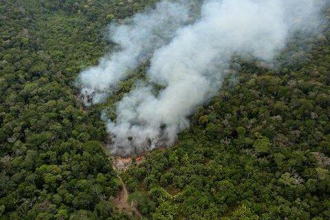 آمازون و آتشسوزی