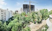 تهران | قطعکنندگان درختان الهیه بازداشت شدند