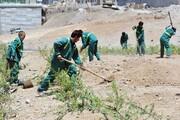 افزایش سرانه فضای سبز محله بلورسازی