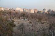 ارسال پرونده تخریب باغ ۳ هزار متری در منطقه ۱ به سازمان بازرسی