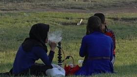 شایعترین سرطانها در بین زنان ایرانی   تهدید سلامت دستگاه تناسلی بانوان با قلیان