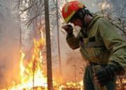 ناامیدی آتشنشانان با تشدید آتشسوزیهای طبیعی در بولیوی