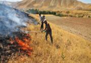 کشاورزان از آتش زدن باقیمانده محصولات زراعی خودداری کنند