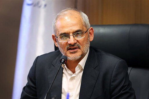 محسن حاجي ميرزايي، هومپيج