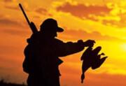 ۵۰ هزار اسلحه حیات وحش گلستان را نشانه گرفته است