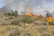 ۴۵ هکتار مراتع و جنگلهای استان سمنان در آتش سوخت