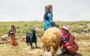 زنان عشایر؛ فعالان گمنام اقتصادی