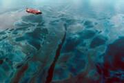 وضعیت آلودگی خلیج فارس بحرانی است   به داد خلیج فارس برسید