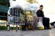 مناسب سازی بازارهای جدید میوه و ترهبار برای سالمندان