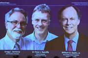 نوبل پزشکی ۲۰۱۹ به پژوهشگران پاسخ بدن به کمبود اکسیژن رسید