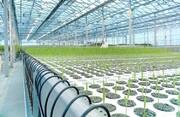 ضرورت هوشمندسازی کشاورزی در همدان