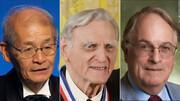 نوبل شیمی ۲۰۱۹ به مخترعان باتری لیتیوم- یون داده شد