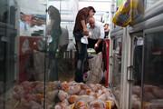 سود تولید مرغ در جیب واسطهها