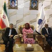وزیر امور خارجه آفریقای جنوبی وارد تهران شد
