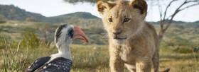 رقابت ۳۲ انیمیشن بلند | شیرشاه از اسکار بازماند